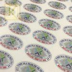 kích thước tem bảo hành hình elip